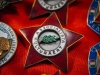 Badge 10